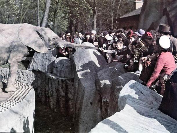 andre zucca Paris sous occupation 1940 1944 42 - Le zoo de Vincennes